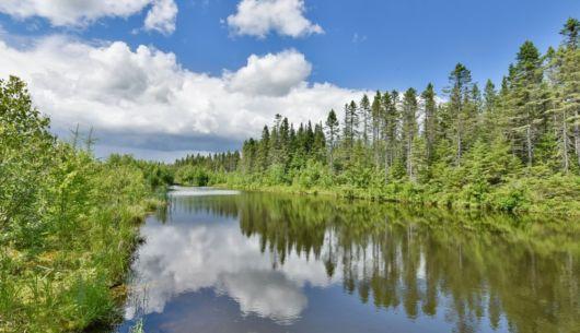 Lac - Chalet Renard