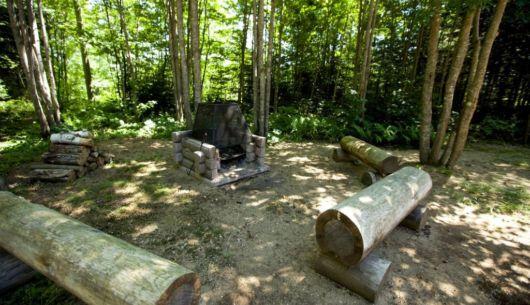 Foyer extérieur - Chalet Forestier