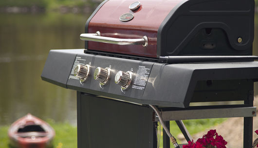 Barbecue et propane fournis