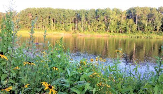 Confort assuré avec vue exceptionnelle sur la forêt et l'eau